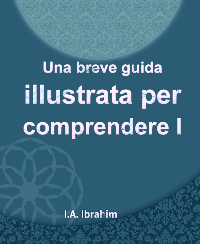 Una breve guida illustrata per comprendere l