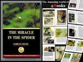 THE MIRACLE IN THE SPIDER