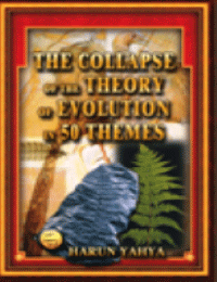 THE COLLAPSE OF THE THEORY OF EVOLUTION IN 50 THEMES