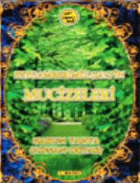 Peygamberimiz (sav)'in Mucizeleri