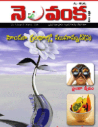 Nelavanka Issue # 29