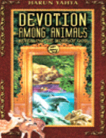 DEVOTION AMONG ANIMALS: REVEALING THE WORK OF GOD