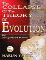 THE COLLAPSE OF THE THEORY OF EVOLUTION IN 20 QUESTIONS