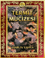 Termit Mucizesi