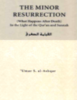 THE MINOR RESURRECTION