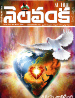 Nelavanka Issue # 65