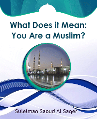 What Does it Mean: You Are a Muslim?
