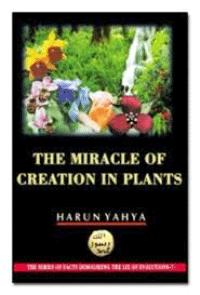 THE MIRACLE OF CREATION IN PLANTS