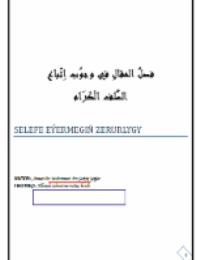 SELEFE EÝERMEGIŇ ZERURLYGY