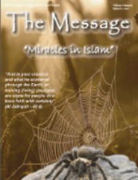 The Message -14