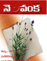 Nelavanka Issue # 13