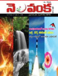 Nelavanka Issue # 27