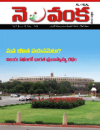 Nelavanka Issue # 31