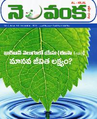 Nelavanka Issue # 50