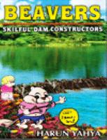 BEAVERS SKILFUL DAM CONSTRUCTORS