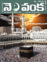 Nelavanka Issue # 61