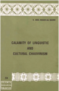 Calamity Of Linguistics And Cultural Chauvinism
