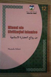 Minuni ale civilizatiei Islamice
